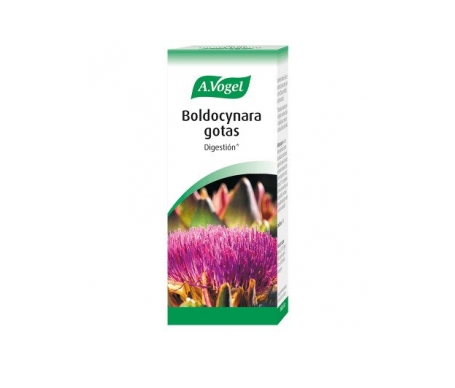 A. Vogel boldocynara 100ml