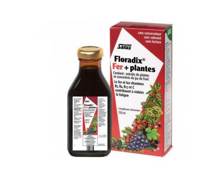 Floradix® 250ml