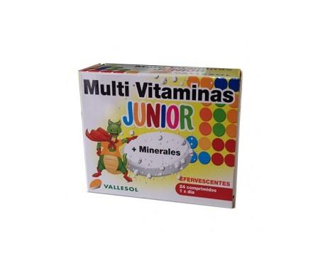 Vallesol Multivitaminas Junior 12uds