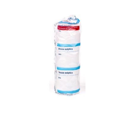 Alvita envase aséptico 24h 2l