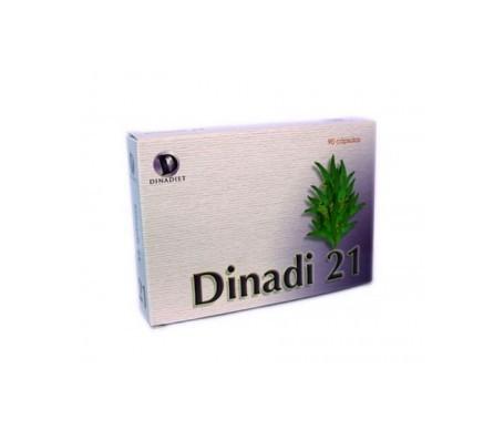 Dinadiet Dinadi 21 90cáps