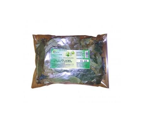 Stevia Premium hoja seca de graviola / guanábana 35g