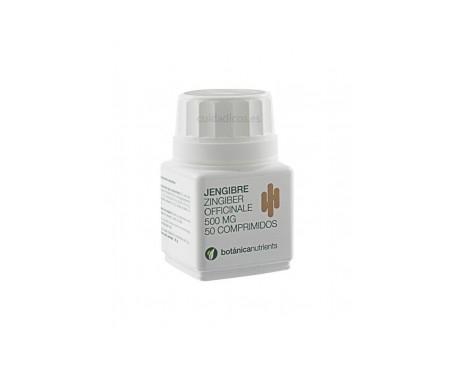 Botanicapharma Jengibre 500 Mg 50 Comp