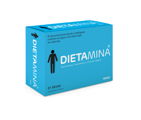 Dietamina 21 Sticks