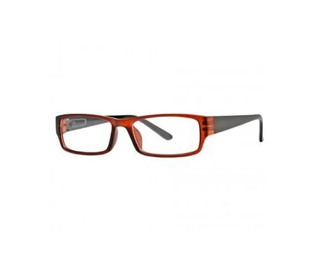 Nordic Vision modelo Sater color marrón y negro dioptrías +1,00 1ud