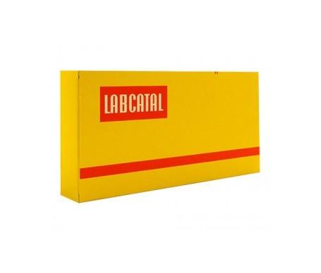 Labcatal Magnesio 28 Ampollas