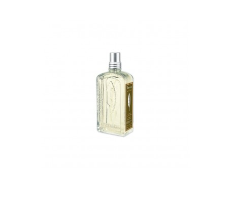 L'Occitane agua de colonia verbena 100ml