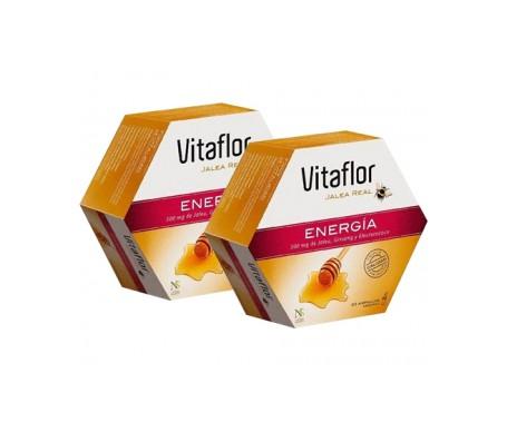 Vitaflor Jalea Real Energóa 10ml 20ampx2uds