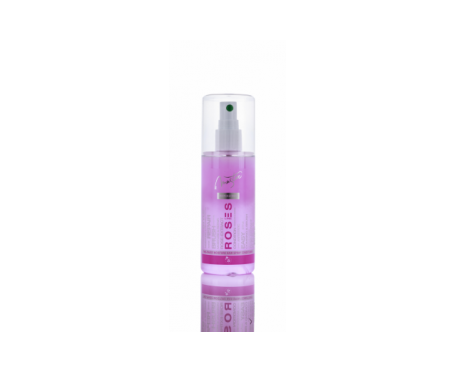 Professional Master Spa Conditioner Spray idratante biofasico per capelli con rosa bulgara