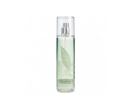 Elizabeth Arden Green tea bamboo shower gel 500ml